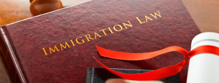 "New Insights: ""Immigration and Health: Law, Policy, and Ethics"""